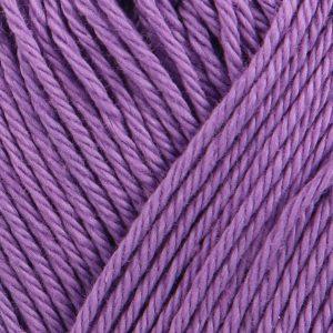 Catania hyacinth minta